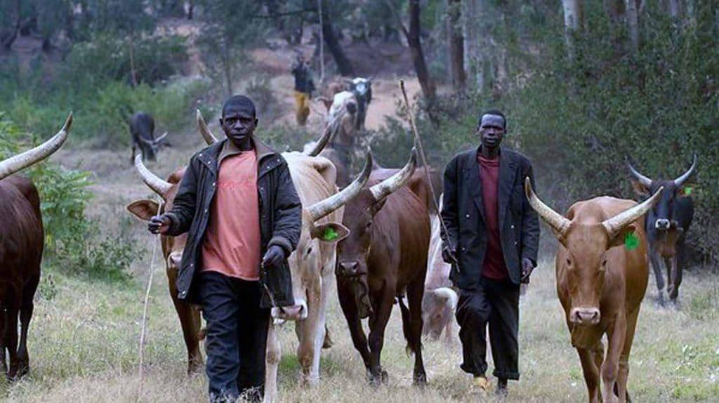 fulani herdsmen saga in Nigeria